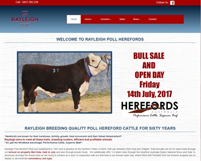 Rayleigh Poll Herefords Website