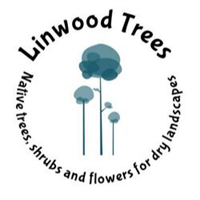 Linwood Tree Nursery